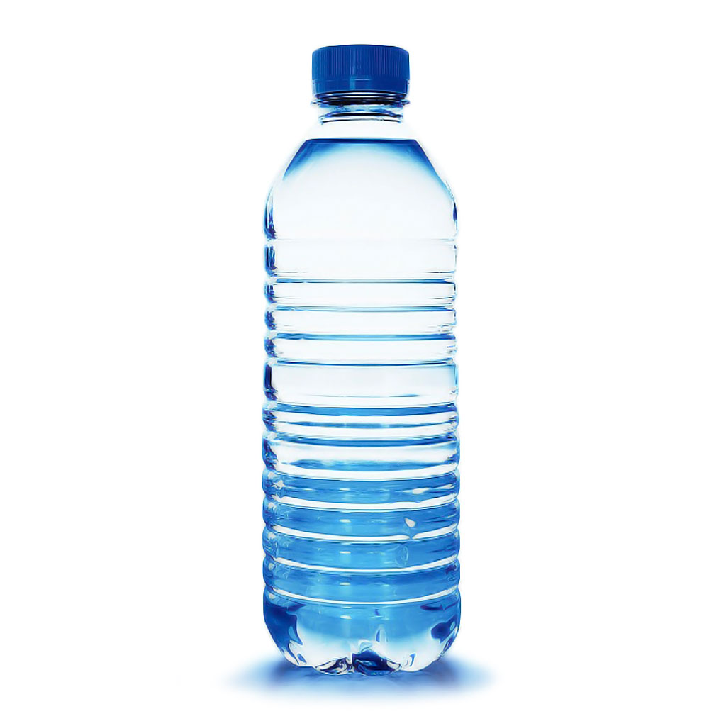 Water Bottle – Rajas